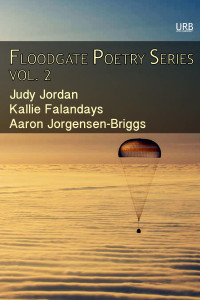 floodgate_coverart_no2_2015_6x9_front