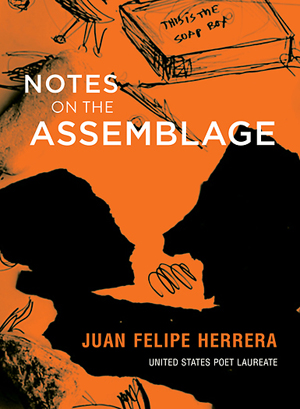 notes-on-the-assemblage